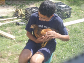 young boy sitting holding a pet chicken