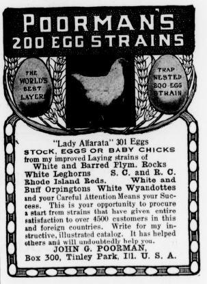 200 egg strains