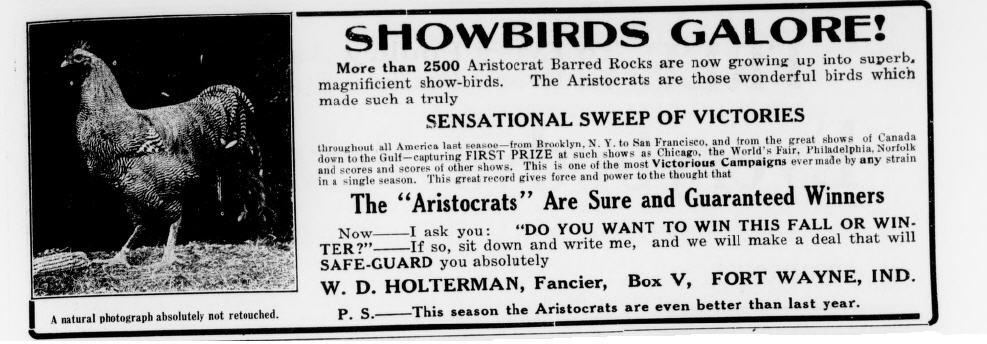showbirds