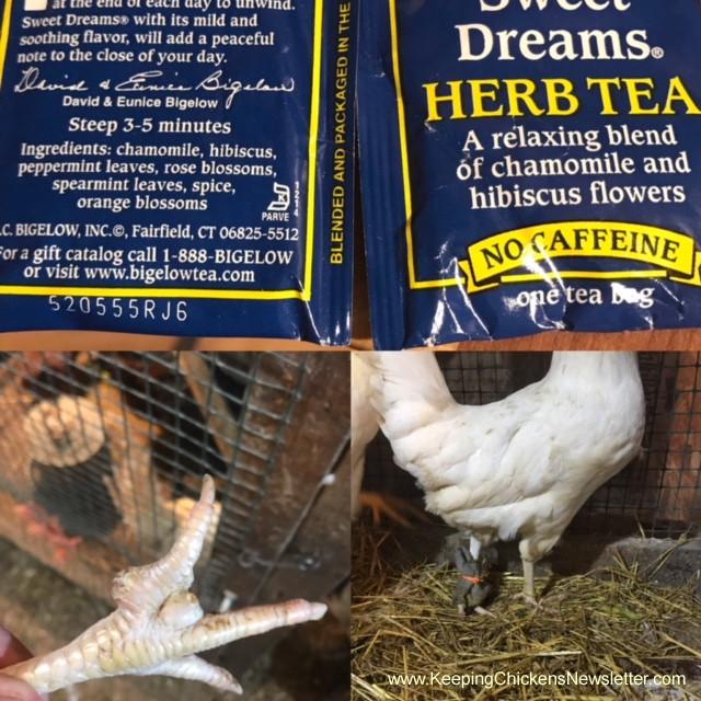 sweet dreams tea and chicken foot